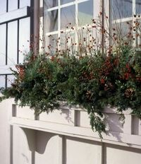 winter window boxes - Google Search