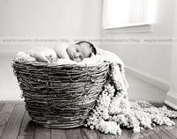 Baby in basket with blanket cascading