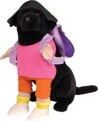 DORA THE EXPLORER DOG COSTUME, I totally had that stuffed animal