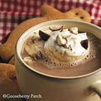 Malted Hot Cocoa from 101 Christmas Recipes Cookbook
