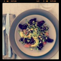 beet, avocado, and grapefruit salad