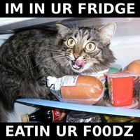 In your fridge!.. Big Lolz