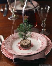 Christmas-tree place cards: Cut a branch into thin rounds. Drill a hole in the center using a small bit. Insert sprigs of greenery and top with a paper name tag, either set or tied with twine!