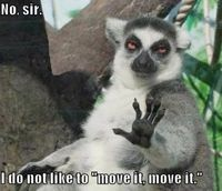 I like to move it .. NOT!