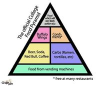 The Official College Food Pyramid