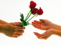 How to Send Roses on Valentine's Day