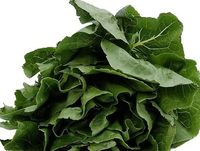Spinach healthy for you in so many ways!