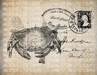 antique crab motif