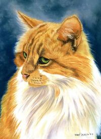 Animal Artistry by Bev Lewis: Image of the Week - pastels on sanded paper