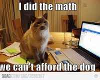 sometimes I think Willoe is secretly calculating this :p