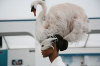swan hat via vogue