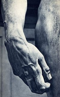 Michelangelo's David, hand detail for Ludwig Goldscheider's Michelangelo, 1953 via: Photo Tractatus