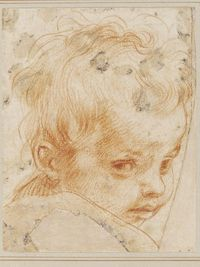 Study for the Head of Jesus, Andrea del Sarto Palazzo Barberini, Rome